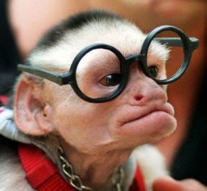 Wearing glasses makes you look smarter