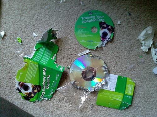http://pit.dirty.ru/dirty/1/2009/01/09/24216-214213-f401b3c6153d9456012d99f6968b7658.jpg