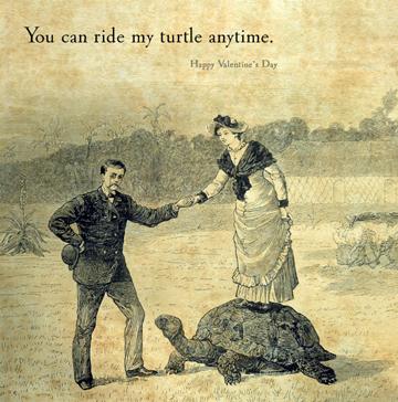 valentine-turtle